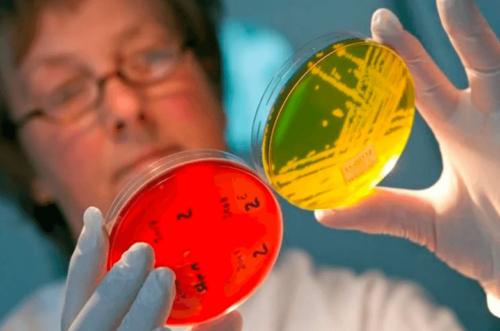 Действия при распространении инфекции в коллективе