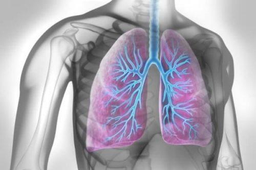 Первые признаки воспаления лёгких: как распознать вовремя?