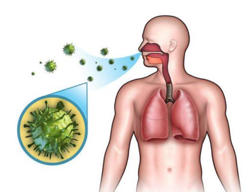 Антибиотики от стрептококковой инфекции