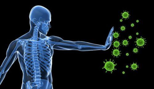 что такое вирусная инфекция