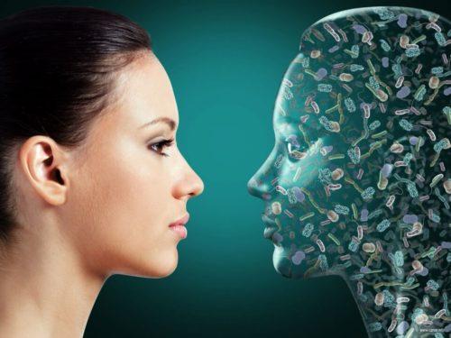 микроорганизмы в человеке