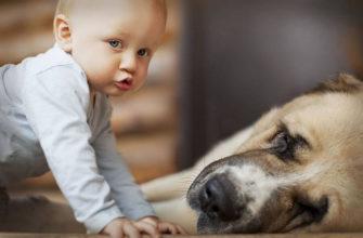 Гельминтоз у детей