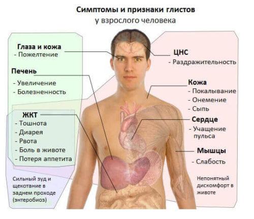симптомы гельминтозов