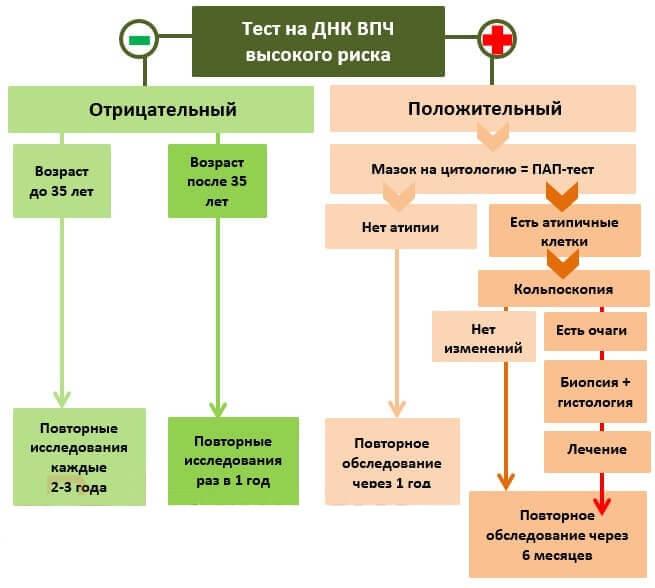 Днк впч тест что это такое - Jks-k.ru